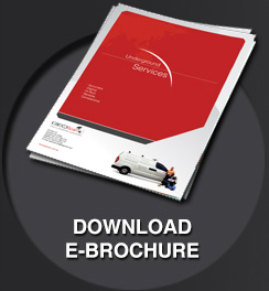 Download E-brochure